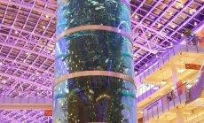 ФОТО читателя Delfi: А вы видели самый высокий в мире аквариум?