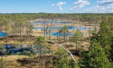 Жители Эстонии все чаще проводят свой отпуск дома