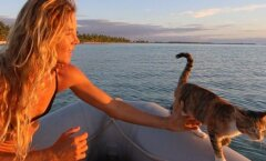 Naine teeb oma suure unistuse teoks: ümbermaailmareis koos kassiga