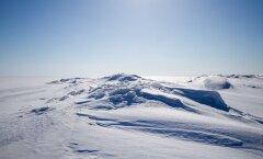 С этой недели разрешено выходить на лед Чудского озера и Нарвского водохранилища