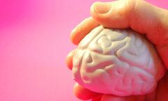Hoia oma aju noorena: selleks vajad piisavalt puhkust ja vanu mustreid muutvat mõttetööd