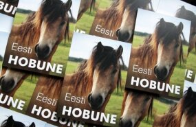 Ilmus hobuste värvusi ja kaaluprobleeme käsitlev artiklitekogumik