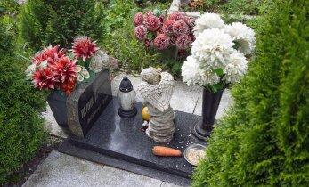 Где и как хоронить умершего питомца, а что ни в коем случае делать нельзя