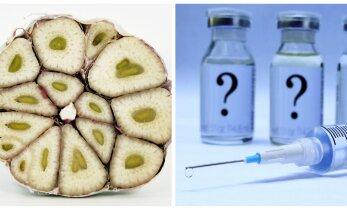 Müüdid ja tegelikkus: kas vaktsineerimine on vajalik või piisab küüslaugust ja kätepesust?