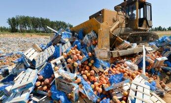 Россия продлит продуктовое эмбарго до конца 2017 года