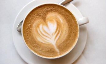 Mis teeb kohvi hapuks? Kas hapu maitsega kohv on halb?
