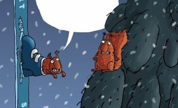 JUTUMULL: Mida orav ütleb?