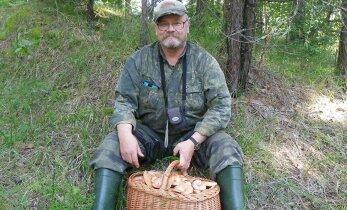 Какой урожай ждет нас в этом году в лесах Эстонии — что говорят приметы и специалисты