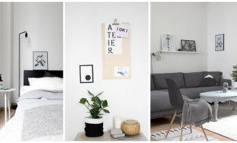 Skandinaavia hõngu ja disainiga täidetud korter Berliinis