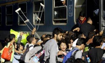 Austria kaitseminister: Merkel on vastutustundetu