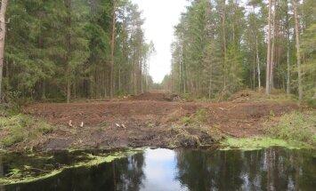 Kevadised raadamistööd Linnusaarel, kus muu hulgas tuleb täita ka kunagi kaevatud kuivenduskraavid.