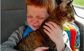 Südamlik taaskohtumine: pisipoiss ei suutnud emotsioone varjata, kui tema kadunud kass koju tagasi tuli