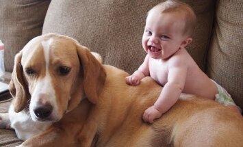 BEEBIVIDEO: Vaata kõige armsamaid kaadreid lemmikloomade soovist beebidele oma kiindumust näidata