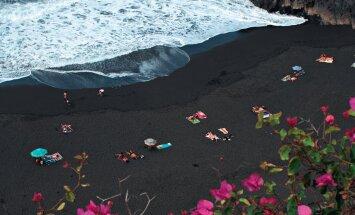 Päikeselised Kanaarid