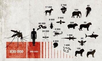 GRAAFIK: Millised loomad tapsid eelmisel aastal maailmas kõige rohkem inimesi?