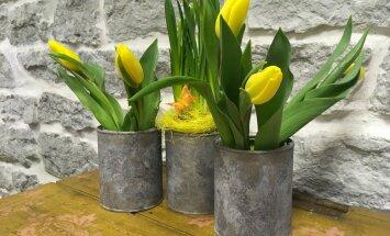 Tühjadest värvipurkidest lilleanumad