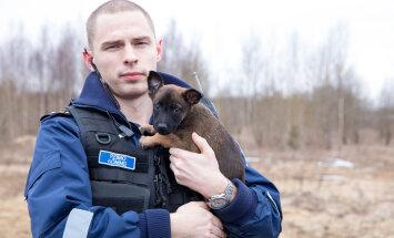 Eesti politseikoertel on Instagramis nüüdsest oma konto