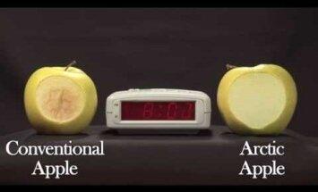 USA-s tulevad järgmisel kuul müügile esimesed geenimuundatud õunad