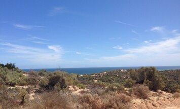 Juristitoolilt rändama ehk seiklus Austraalias 4: sekeldused autoostu ja kalurikülla sõiduga