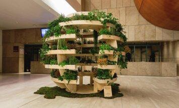 Tahad vähesel pinnal palju taimi kasvatada? Moodsa kerakujulise kasvuala joonised leiad siit