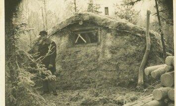 Aastail 1944–1953 oli Eestis kokku umbes 14 000–15 000 metsavenda.