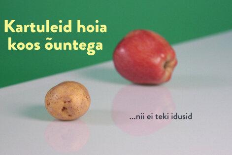 NIPINURGA VIDEO: Just nii hoiad puuvilju kodus võimalikult kaua värskena!