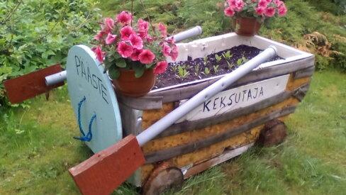 Laisa aedniku abilaev