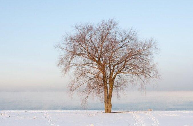 Десять мест на планете, где установлены рекорды холода
