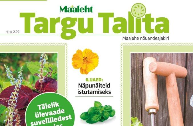 Targu Talita ajakirja nõudlus on nii suur, et trükitakse lisatiraaž
