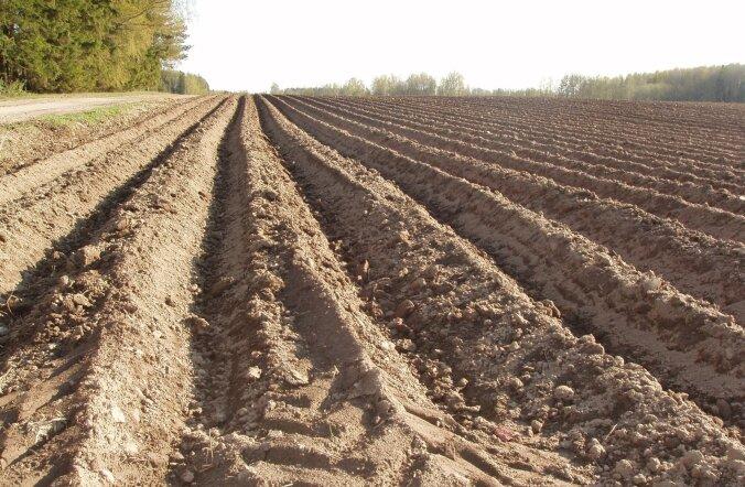 Nüüd saavad ka 40aastased taotleda noorte põllumajandustootjate tegevuse alustamise meetme toetust
