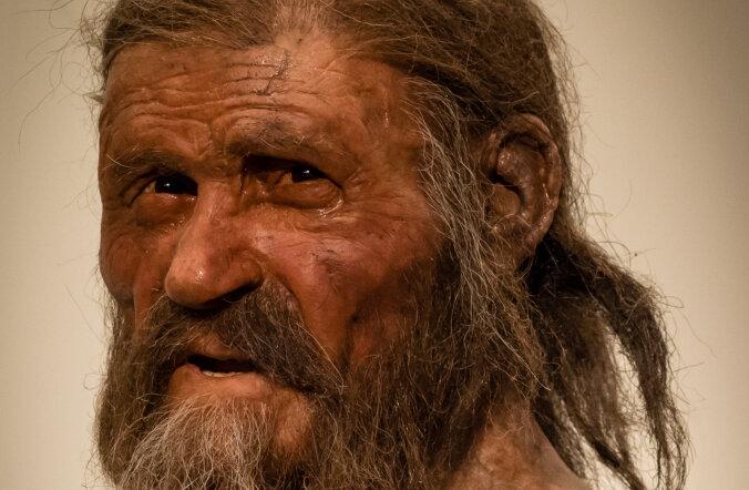 Kiviaja mood: mida kiviajamees Ötzi peas kandis
