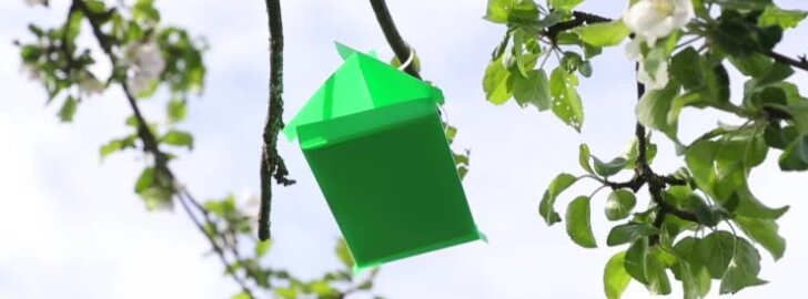 VIDEO: Ülivinge majake, mis petab ära iga putuka