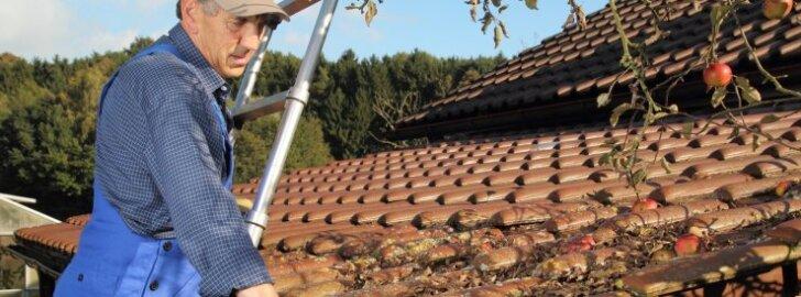 Sügisel tuleks katus ja vihmaveerennid puhastada lehtedest ja oksaprahist.