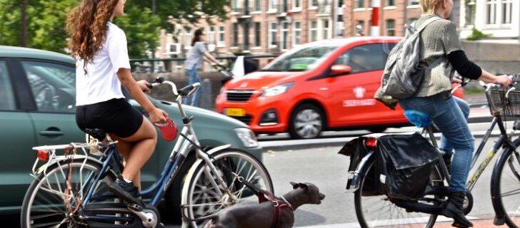 В будущем без велосипеда в городах будет не обойтись