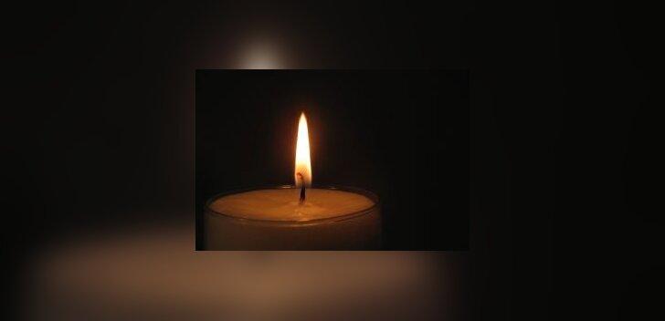 Eestis suri 50-aastane mees seagrippi