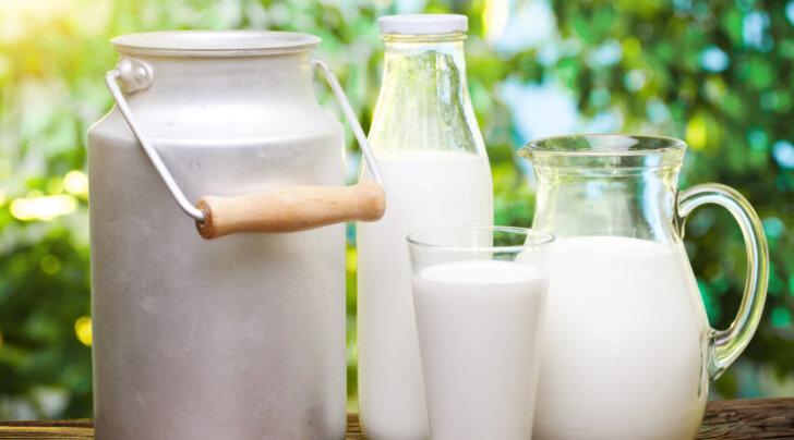 Ajurveeda praktik annab nõu, kas ja kuidas tuleks tarbida piimatooteid