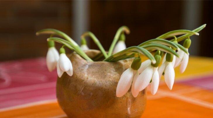 Как уберечься от простуды весной
