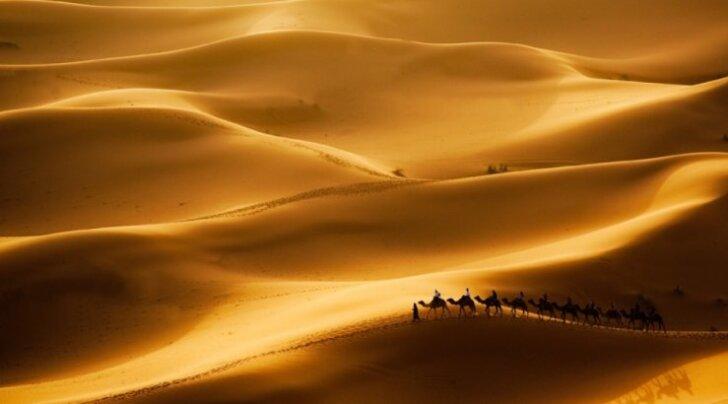 Liwa kõrb