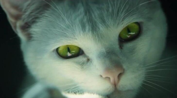 """""""Visa hinge"""" ja """"Kiskja"""" režissöör tegi pärast 14 aasta pikkust pausi reklaami videomängule"""