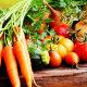 Kui palju köögivilju peaks päevas sööma, et see kehale ka tegelikult kasu tooks?
