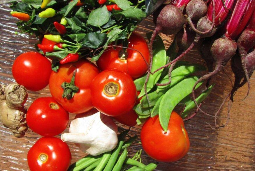 Toitumisnõustaja: pange lapsed armastama värvilisi puu- ja köögivilju!