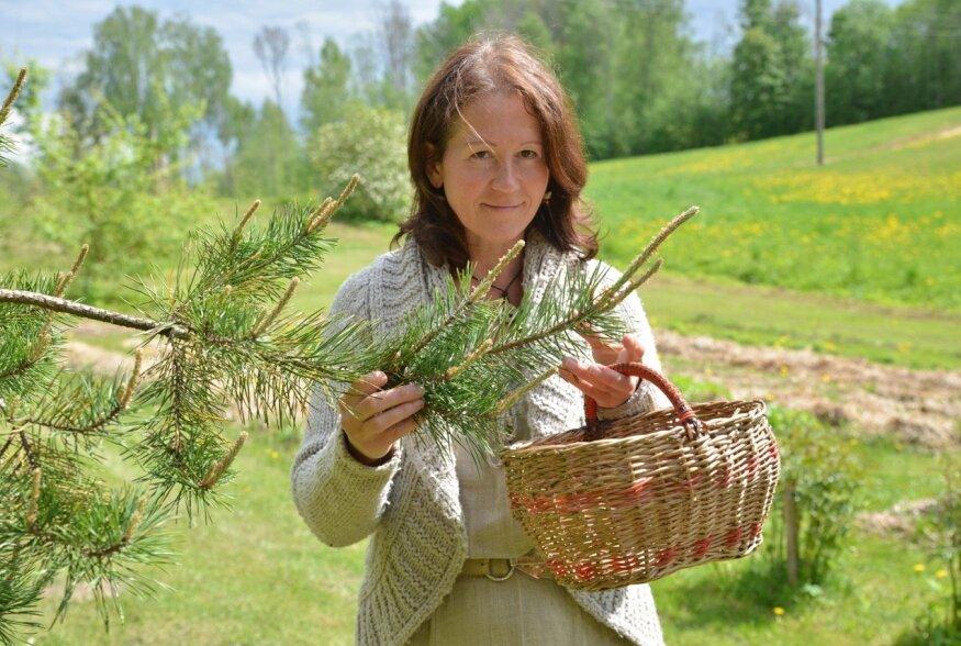 Kuulus taimetark Metsamoor segas talviseks tervenduseks kokku supereliksiiri