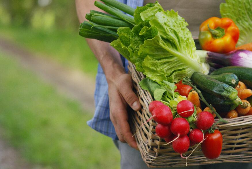 TOITUMISNÕUSTAJA SELGITAB | Milleks meile päriselt köögivilju vaja on?