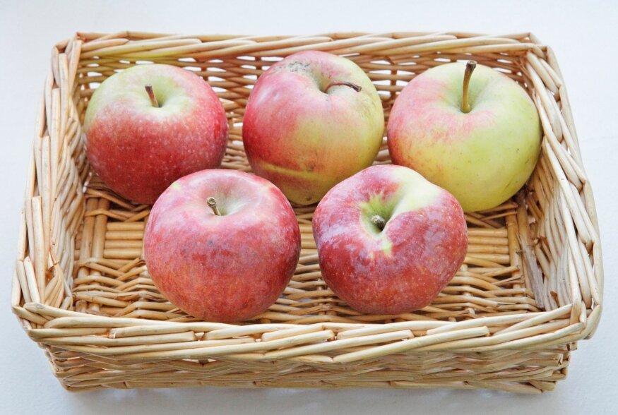 Kodumaised õunad on tervise sõbrad: Söö vähemalt õun päevas