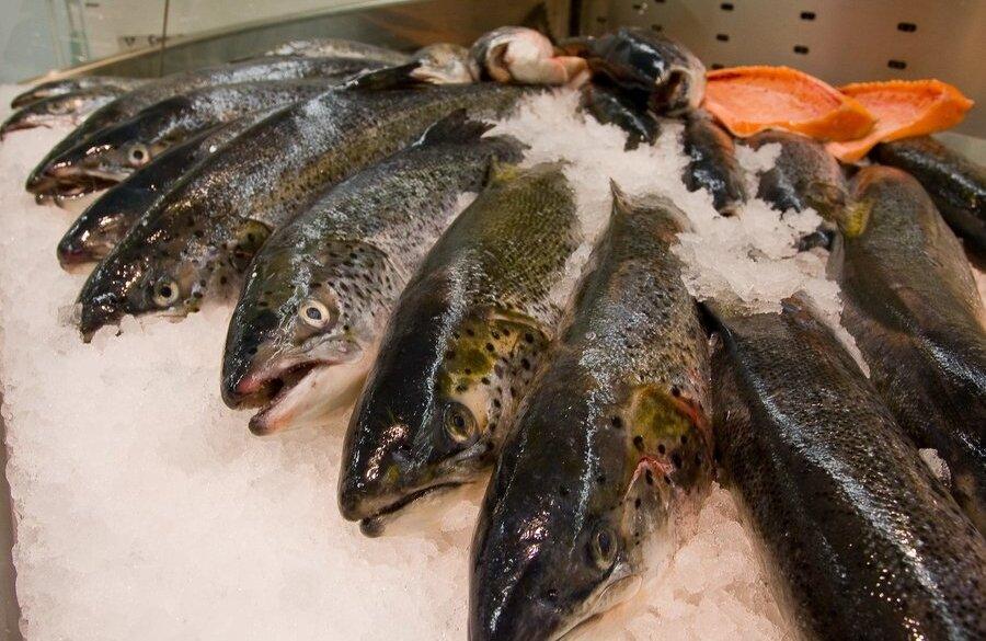 О норвежском экспорте морепродуктов