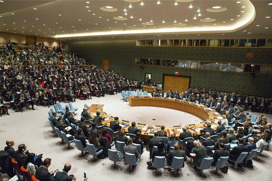 Собез ООН призвал немедленно закончить огонь вДонбассе