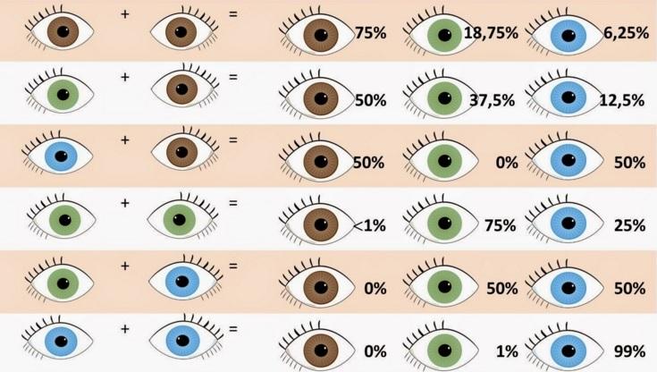 Когда меняется цвет глаз у детей?